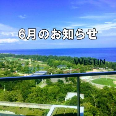 LINE@限定【6月のお知らせ】